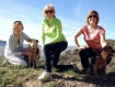 Happy Tails on Happy Trails 02