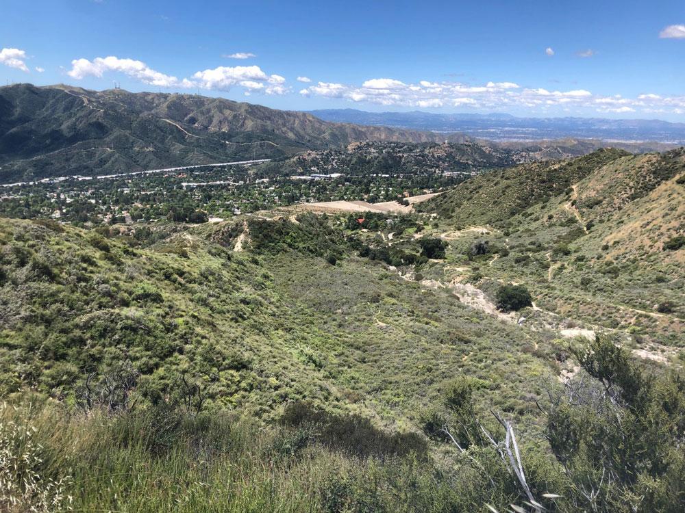A view from a trail in Deukmejian Park